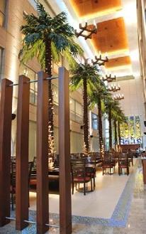 pálmafa étterem, pálmafa szálloda